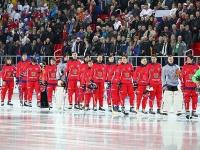 ЧМ-2015 по хоккею с мячом