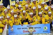 Кого сборной России нужно бояться в составе Швеции. Это не Форсберг