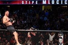 Кормье – Леснар и ещё 3 боя, которые нужно организовать после UFC 226