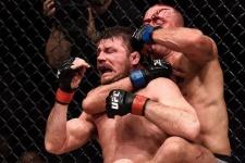 Сен-Пьер хвастается поясом, Намаюнас — помидором. Герои UFC 217 в соцсетях