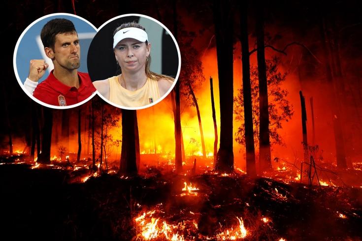 Джокович, Шарапова и другие теннисисты ведут борьбу с пожарами в Австралии