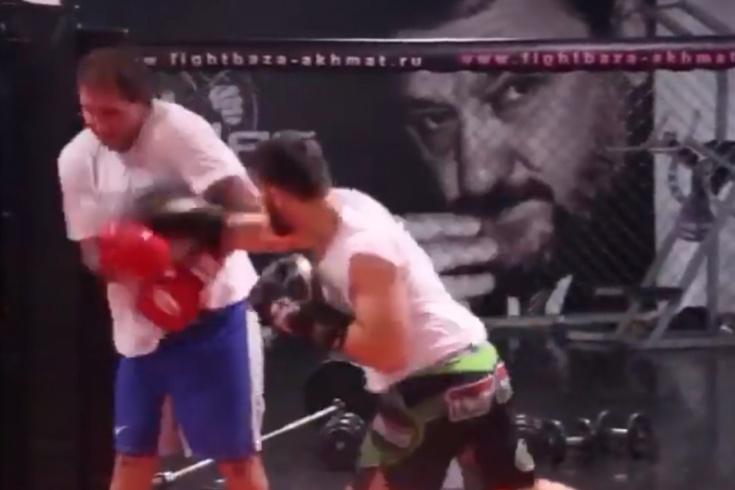 Александра Емельяненко нокаутировал чеченский боец Арби Мадаев, видео 2017